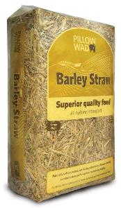Pillow Wad Barley Straw Large 2kg
